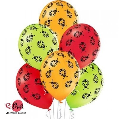 Воздушные шары с гелием с рисунком «Божьи Коровки»