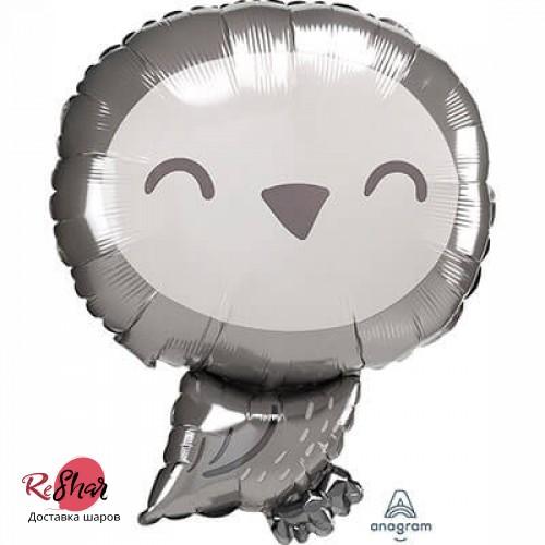Воздушный шар с гелием фигура Гарри Поттер, Сова 48см