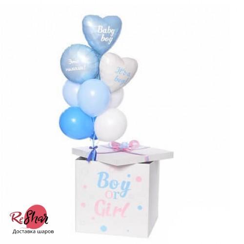 Коробка с шарами сюрприз гендер пати мальчик